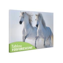 Tablou canvas fosforescent Cai albi, 60x40 cm