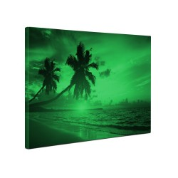 Tablou canvas fosforescent Tropical Island, 40x20 cm