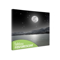 Tablou canvas fosforescent Luna