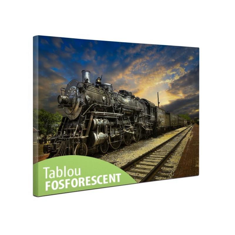 Tablou canvas fosforescent Fantastic Train, 60x40 cm