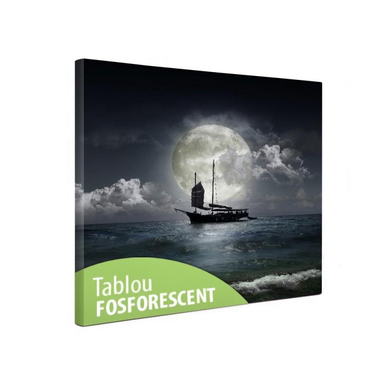 Tablou canvas fosforescent Barca pe mare, 30x30 cm