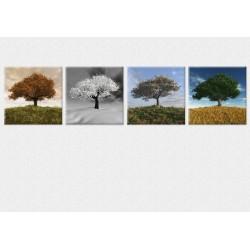 Set Tablou Dual-View Patru Anotimpuri