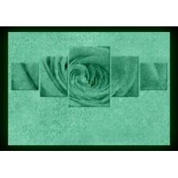 Set Tablou Dual-View Trandafir culoarea piersicii
