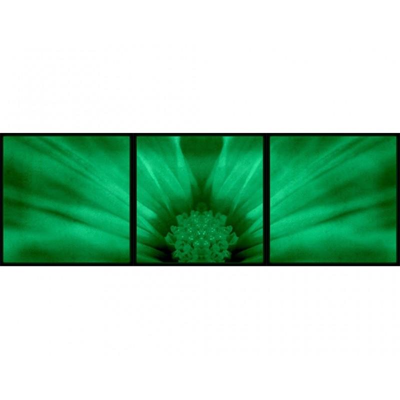 Set Tablou Dual-View Floare in detaliu