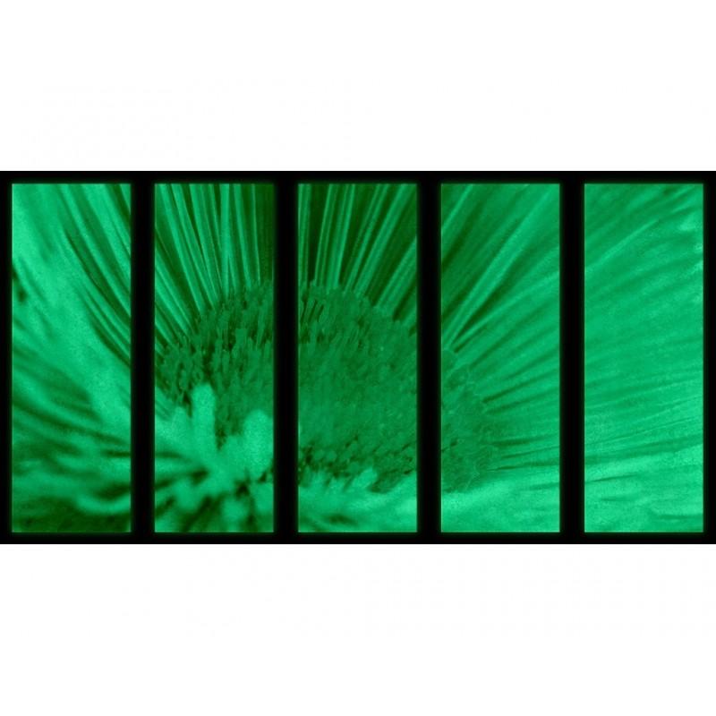 Set Tablou Dual-View Floare macro