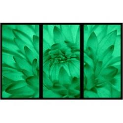 Set Tablou Dual-View Floarea se deschide