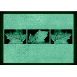 Set Tablou Dual-View Frunze de toamna
