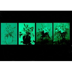 Set Tablou Dual-View Lectia de pictura in 4 pasi - Flori