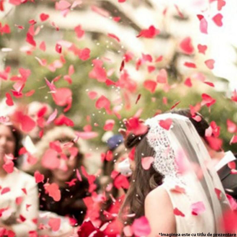 Tun confetti petale trandafir 80 cm