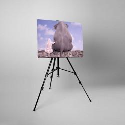 Tablou fosforescent, 40x60 cm, Prietenie Elefant