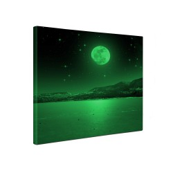 Tablou fosforescent canvas, 30x30cm, lumineaza verde, Moon Light