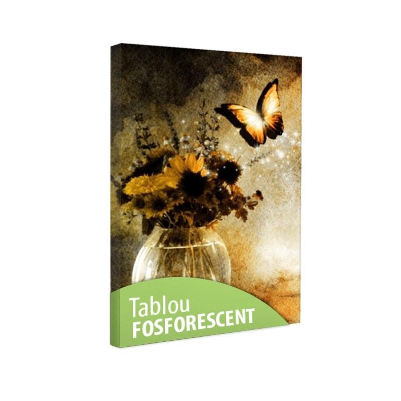 Set tablou fosforescent Evadarea fluturelui