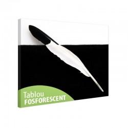 Set tablou fosforescent Pana alb negru