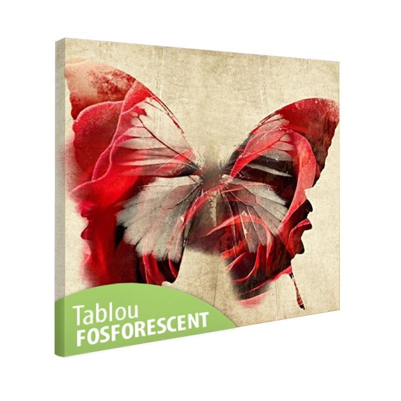 Set tablou fosforescent Fluture rosu