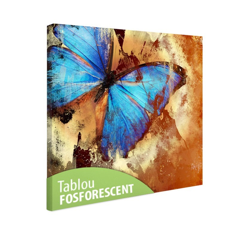 Set tablou fosforescent Fluture turqoise
