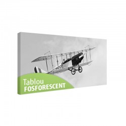 Set tablou fosforescent Biplan in zbor