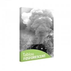 Set tablou fosforescent Tren cu aburi