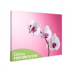 Tablou fosforescent Orhidee pe roz