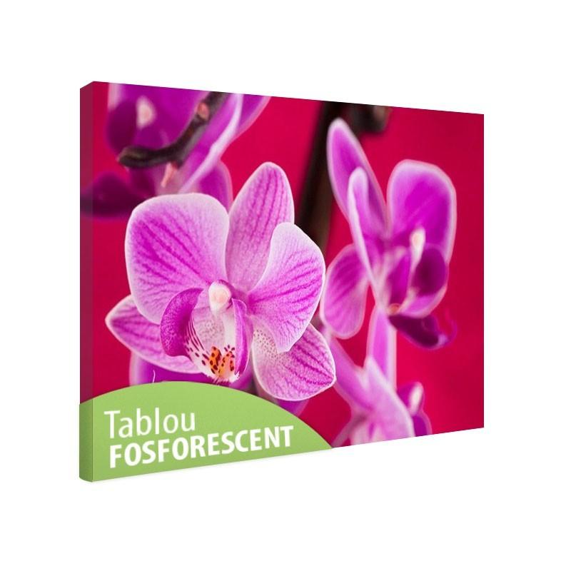 Tablou fosforescent Orhidee violet