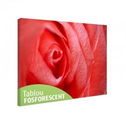 Tablou fosforescent Trandafir in detaliu