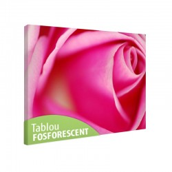 Tablou fosforescent Trandafir perfect