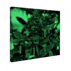 Set tablou fosforescent Fructe de Craciun