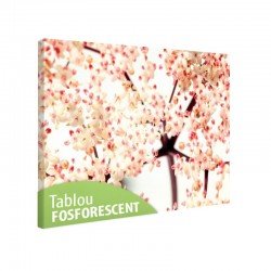 Set tablou fosforescent Flori de soc