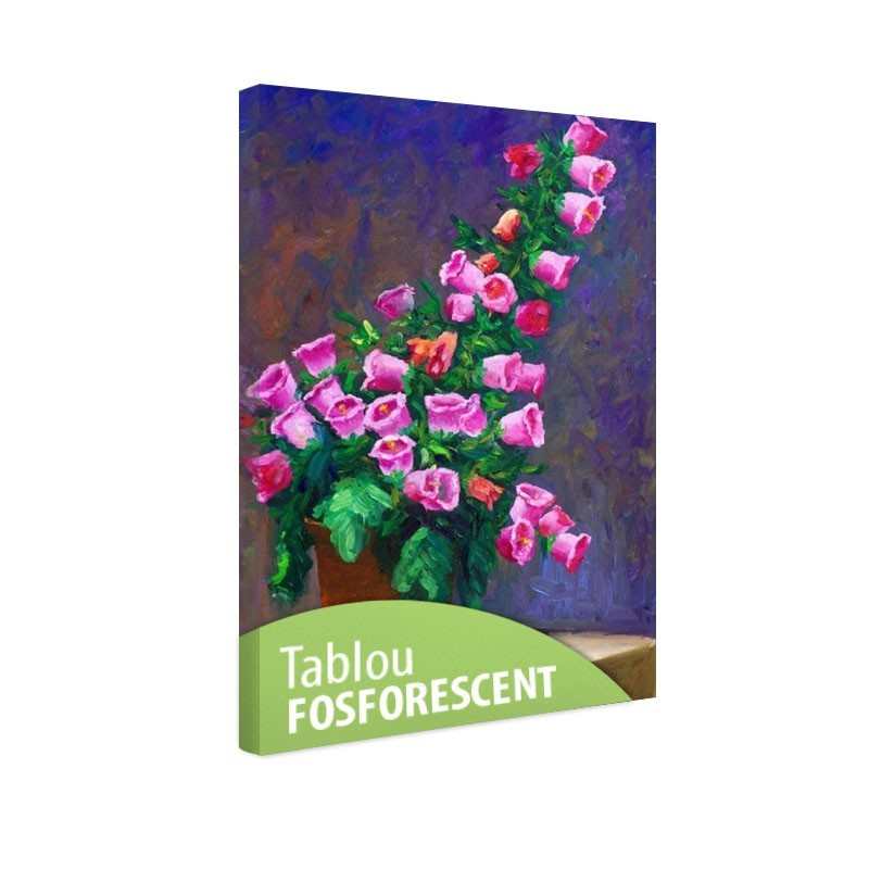 Set tablou fosforescent Campanule roz