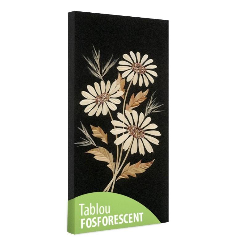 Set tablou fosforescent Flori de musetel