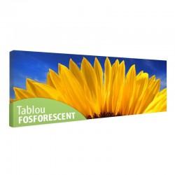 Tablou fosforescent Floarea soarelui macro