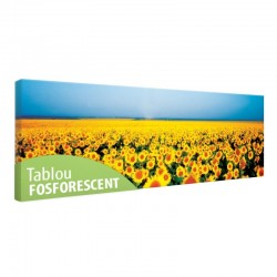 Tablou fosforescent Camp cu floarea soarelui