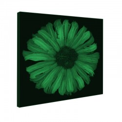 Tablou fosforescent Floarea soarelui abstract