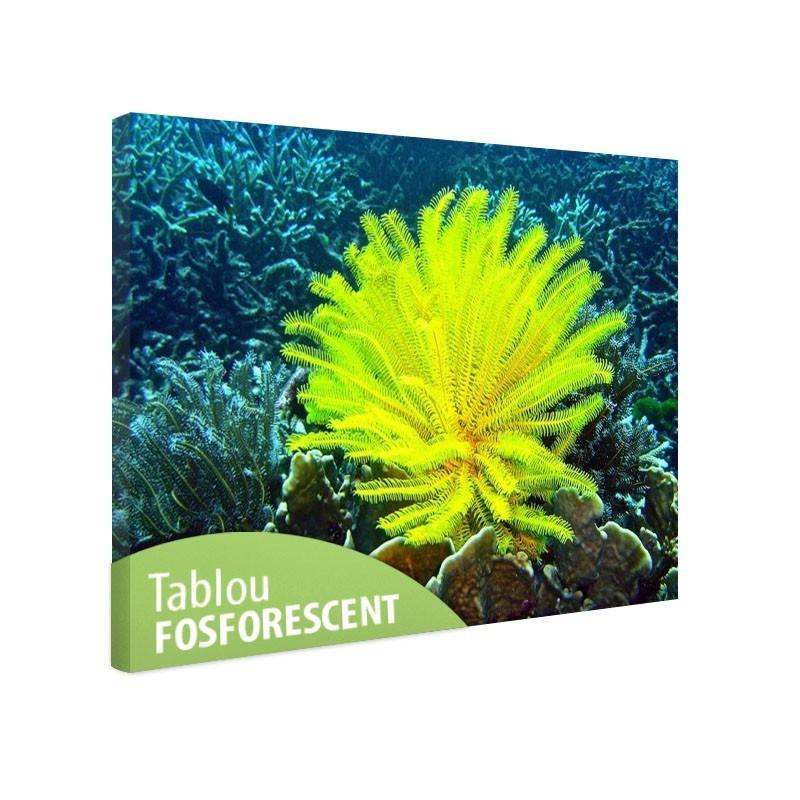 Tablou fosforescent Crin de mare galben