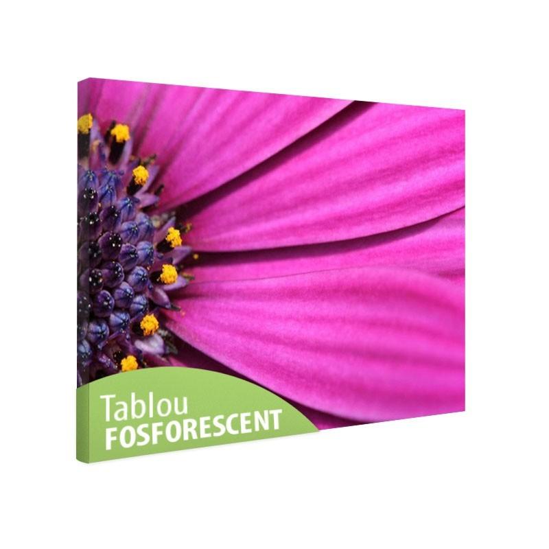 Tablou fosforescent Petale violet