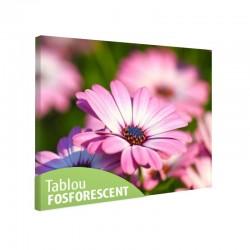 Tablou fosforescent Margareta africana roz