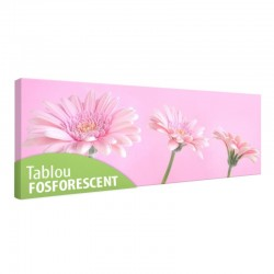 Tablou fosforescent Fundal roz