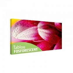 Tablou fosforescent Petale cu roua