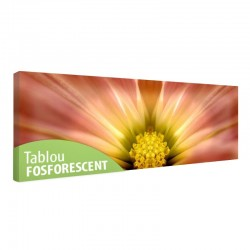 Tablou fosforescent Floare in detaliu