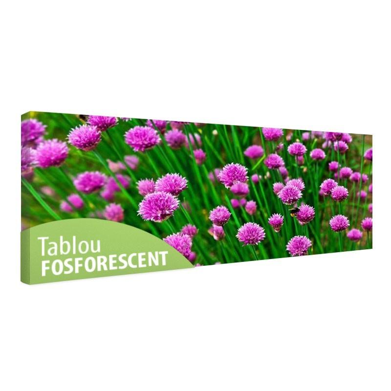 Tablou fosforescent Panorama de flori