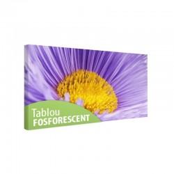 Tablou fosforescent Floare macro