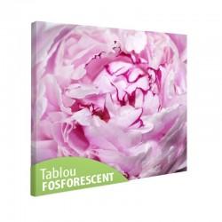 Tablou fosforescent Bujor roz