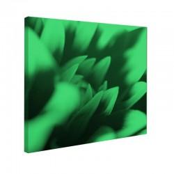 Tablou fosforescent Petale de crizantema