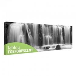 Tablou fosforescent Cascada