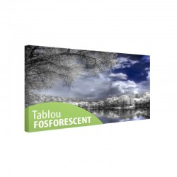 Tablou fosforescent Padurea in format digital