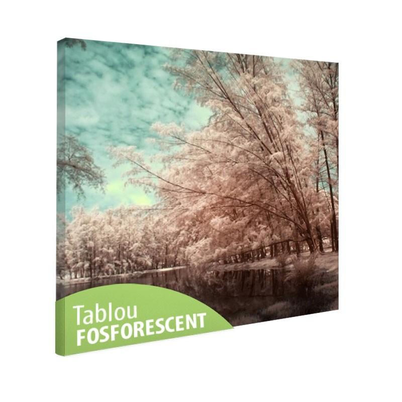 Tablou fosforescent Lacul si copacii