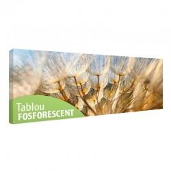 Tablou fosforescent Papadie