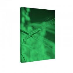 Tablou fosforescent Spic de grau