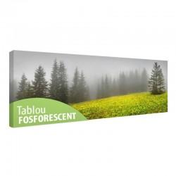 Tablou fosforescent Peisaj carpatin