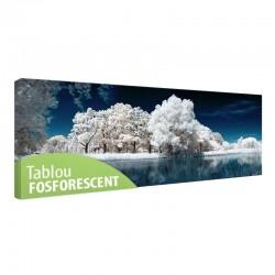 Tablou fosforescent Lac inghetat