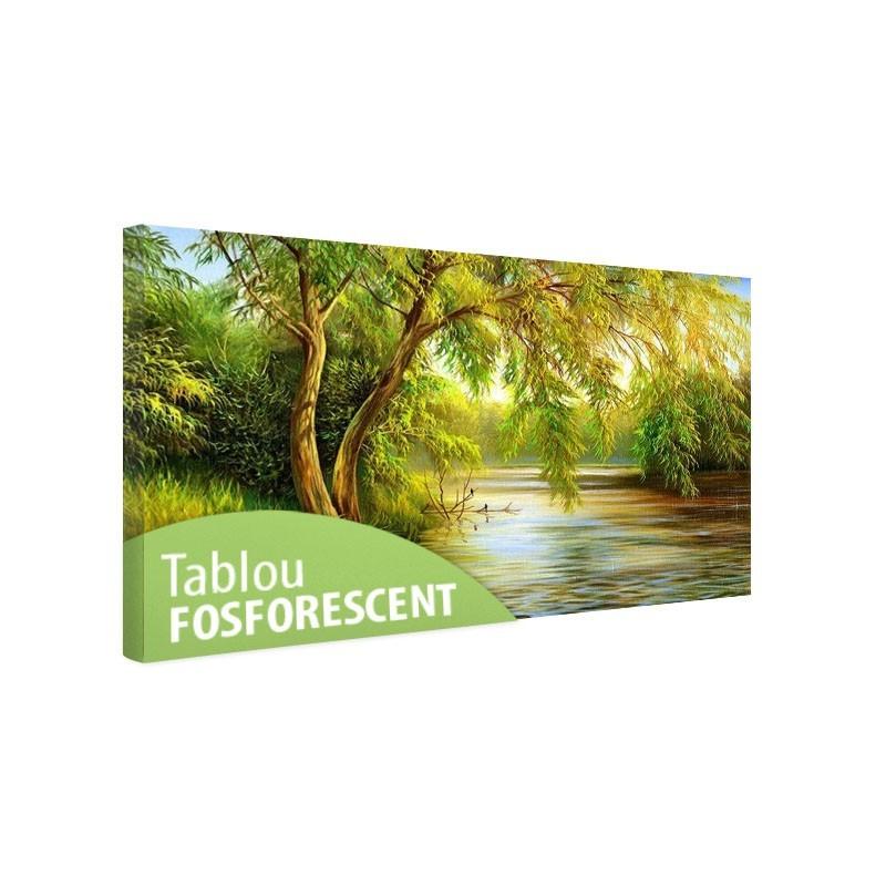 Tablou fosforescent Salcie